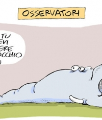 osservatori
